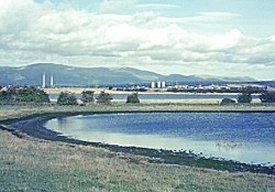 Feasibility and Implications of Managed Realignment at Skinflats